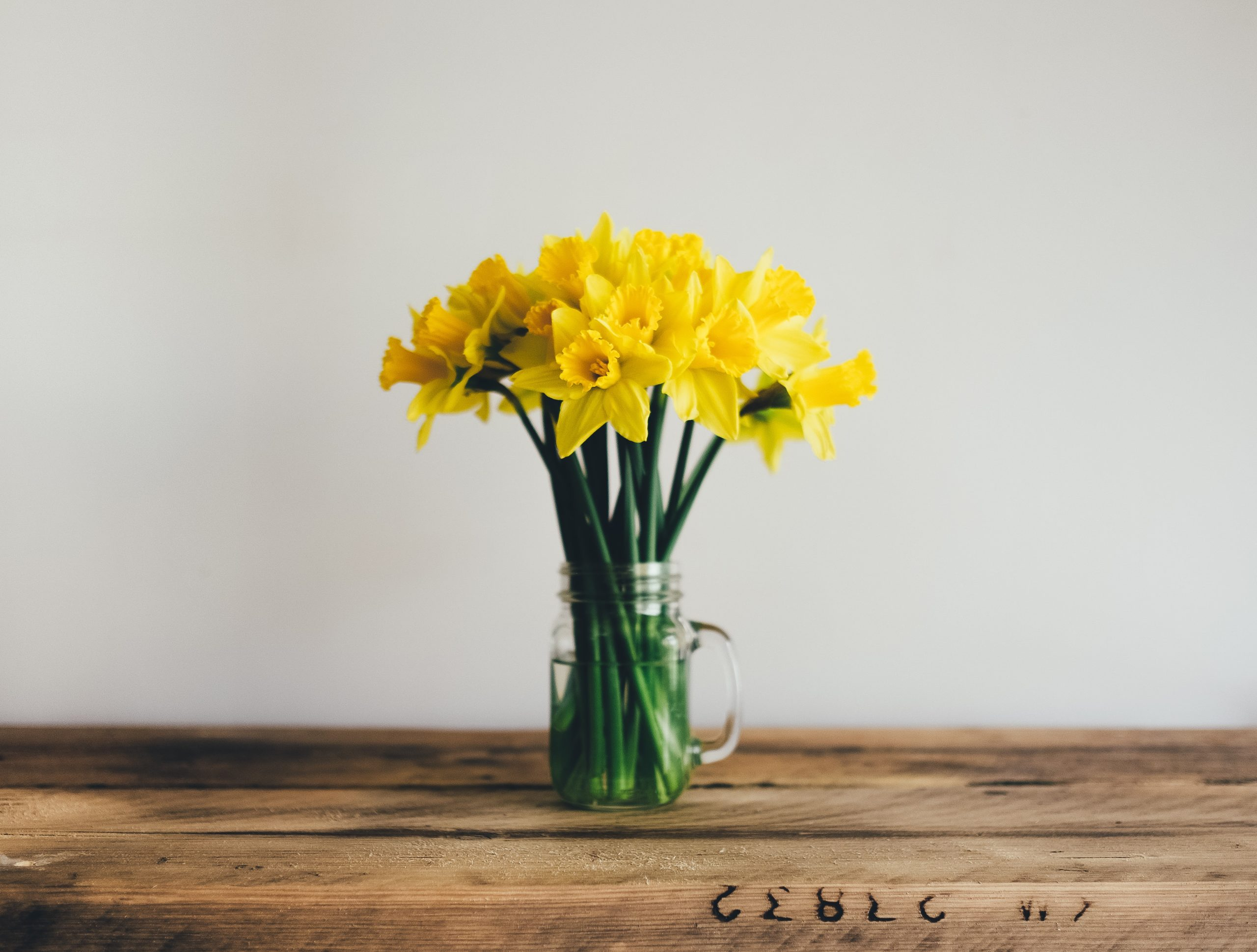 Spring flowers on table